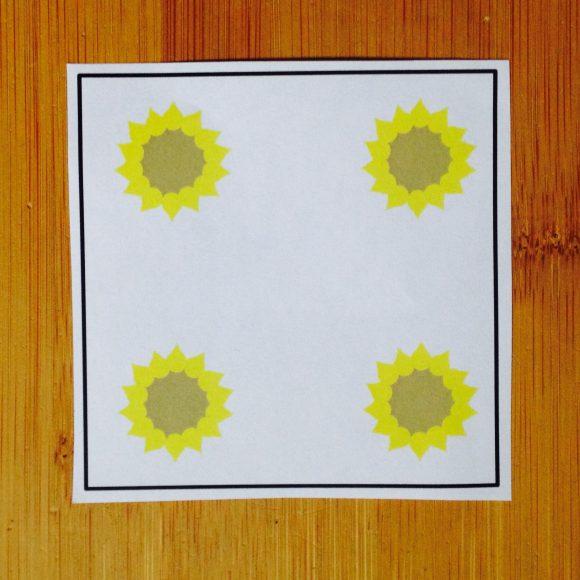 Die Sonnenblume (Mengenerfassung 1 – 6)
